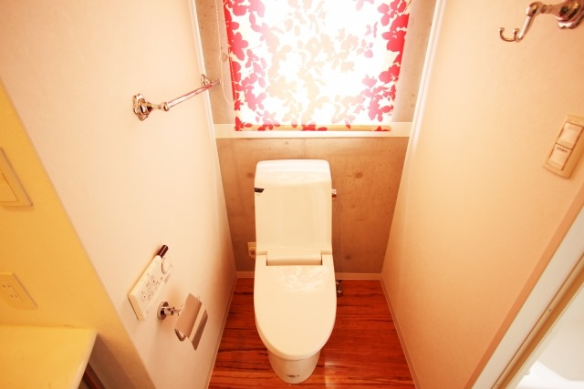 便秘妊婦ですが、トイレでいきんでも大丈夫?妊娠中のいきみ3つのコツ