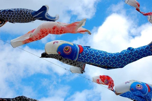 そうなんだ~♪端午の節句で鯉のぼりを飾る5つの由来や意味