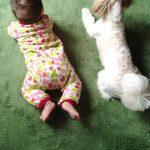 赤ちゃんのハイハイを超まとめ!いつから?語源や練習法・安全対策も!